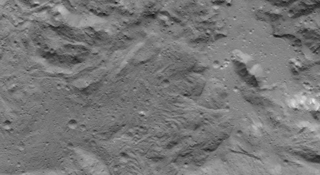 Lobate Flows on Occator Crater