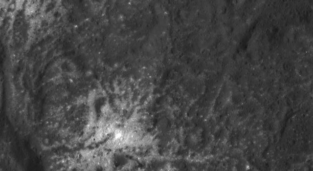Detail of the Vinalia Faculae in Occator Crater