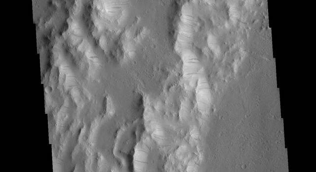 This image from NASA's Mars Odyssey shows the western margin of Orcus Patera. Dark slope streaks are present on most ridges.