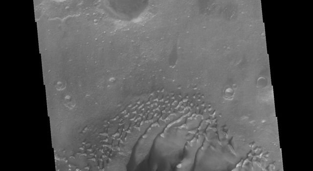 This image from NASA's Mars Odyssey shows a large complex dune form located on the floor of Russell Crater. Russell Crater is in Noachis Terra.