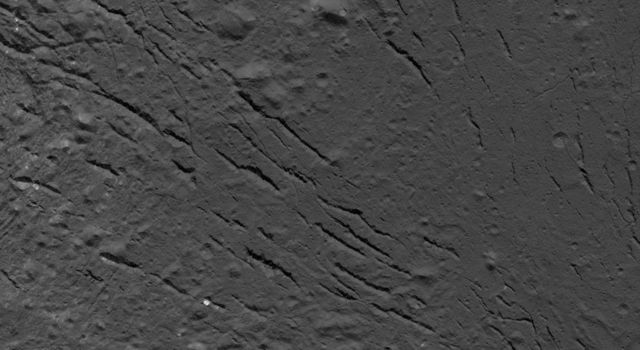 Fracture Pattern on the Floor of Occator Crater