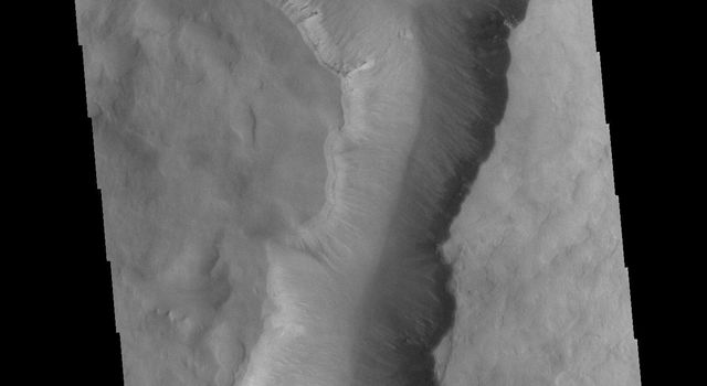 This image from NASAs Mars Odyssey shows a large linear depression in the center of an unnamed crater in Noachis Terra. This crater and the nearby Maunder and Asimov craters share this odd morphology.