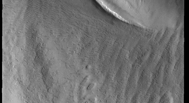 This image, collected near the end of the southern spring season, from NASAs Mars Odyssey shows part of the south polar cap.