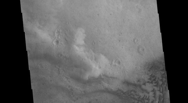 This image from NASAs Mars Odyssey shows part of the floor of Russell Crater, including sand dunes of mulitple sizes. Russell Crater is located in Noachis Terra.