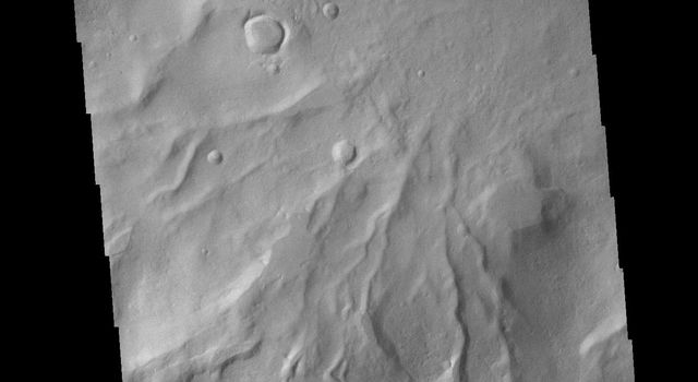 This image from NASAs Mars Odyssey shows numerous channels, also called gullies, dissecting the rim of this unnamed crater in Noachis Terra.
