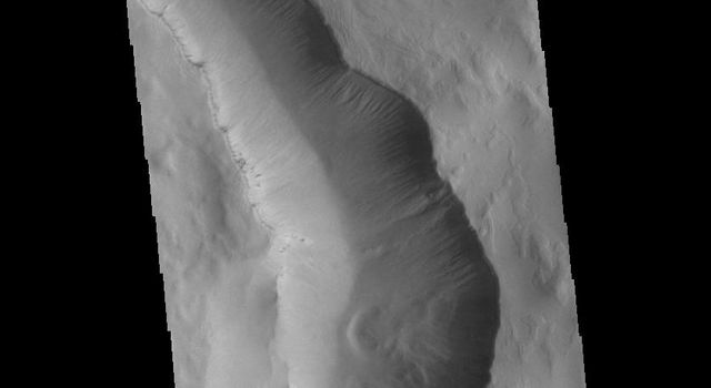 Maunder Crater Gullies