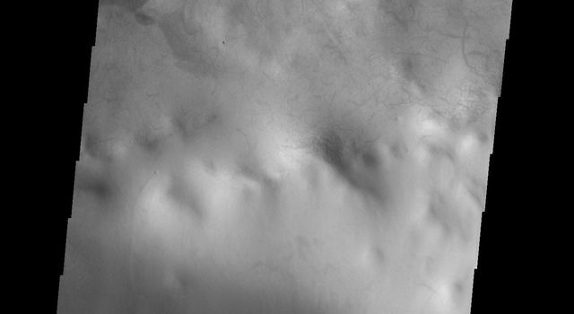This image from NASAs Mars Odyssey shows sand dunes covering part of the floor of this unnamed crater in Terra Cimmeria.