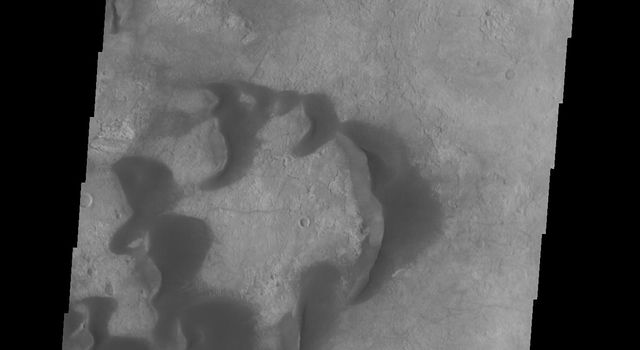 This image from NASAs Mars Odyssey shows several individual dunes located in Kaiser Crater. With continued winds sand dunes will move across the surface.