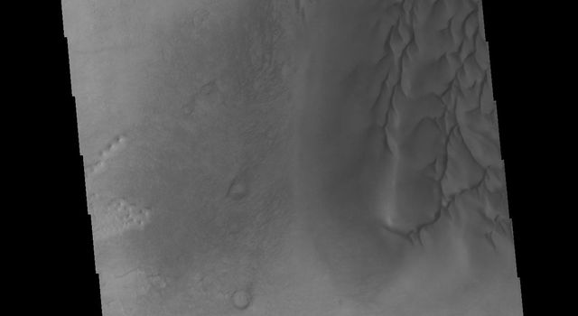 This image from NASAs Mars Odyssey shows part of the floor of an unnamed crater in Noachis Terra.
