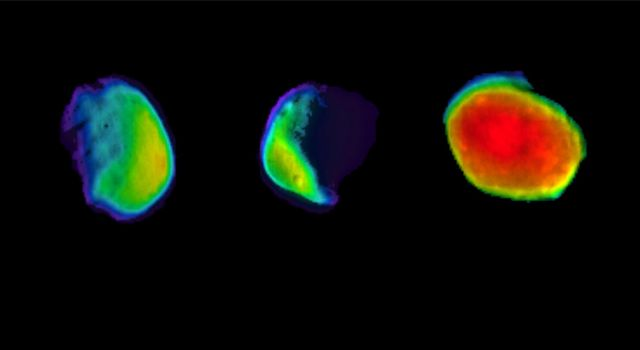 These three views of the Martian moon Phobos were taken by NASAs 2001 Mars Odyssey orbiter using its infrared camera, THEMIS.
