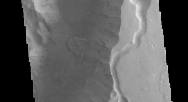 This image from NASAs Mars Odyssey shows a section of Shalbatana Vallis. Along side of the major channel is a smaller tributary channel.