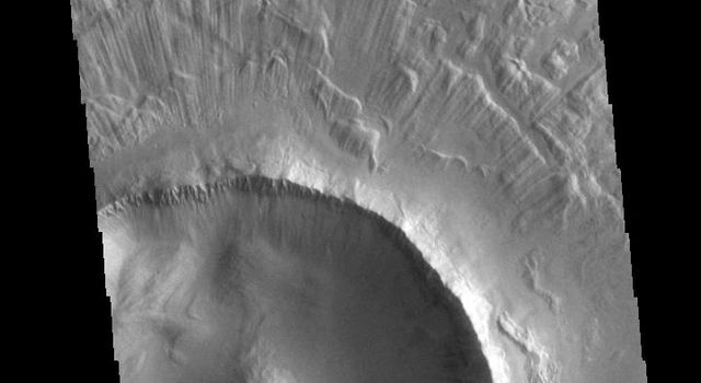 This image from NASAs Mars Odyssey shows part of an unnamed crater in Utopia Planitia. The ejecta surrounding the crater rim shows both layering and radial grooves.