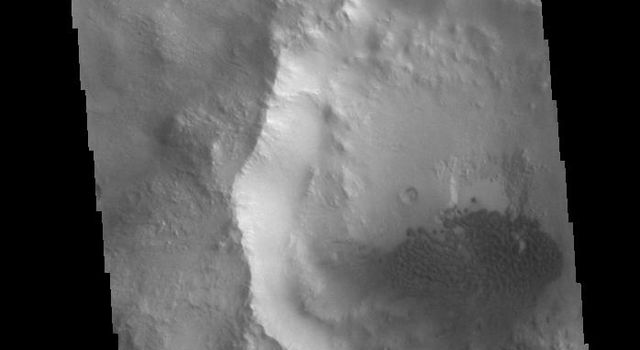 This image from NASAs Mars Odyssey shows a field of sand dunes in an unnamed crater located in Margaritifer Terra.
