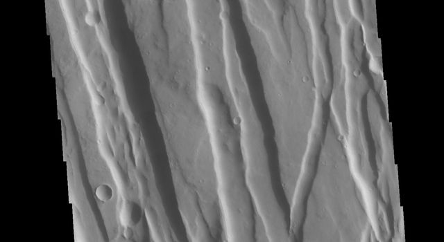 This image from NASAs Mars Odyssey shows part of Ceraunius Fossae. The linear depressions are fault bounded features called graben.