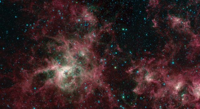 This image from NASAs Spitzer Space Telescope shows the Tarantula Nebula in infrared light.