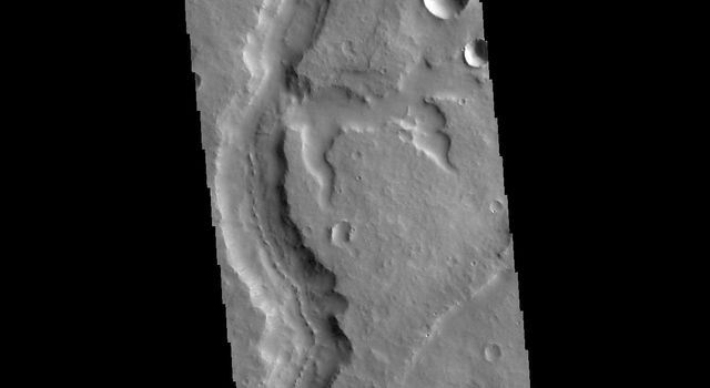This image from NASAs Mars Odyssey shows a section of Naktong Vallis. Located in Terra Sabaea, Naktong Vallis is 670 km long (415 miles).