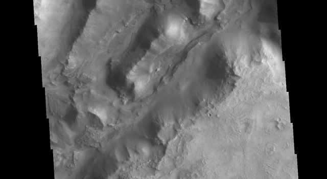This image from NASAs Mars Odyssey shows linear depressions, part of Nili Fossae.