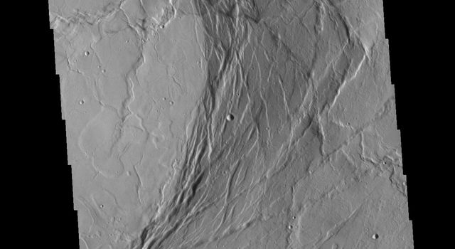 Olympus Mons Summit