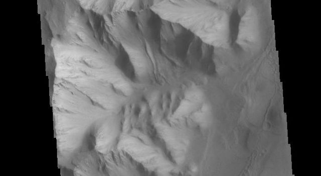 This image from NASAs Mars Odyssey shows dunes on the floor of Orson Welles Crater.