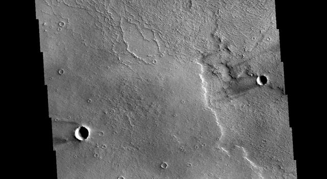 This image from NASAs Mars Odyssey shows several windstreaks located on the volcanic plains of Daedalia Planum.