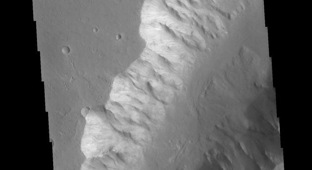 This image from NASAs Mars Odyssey shows a small section of Shalbatana Vallis.