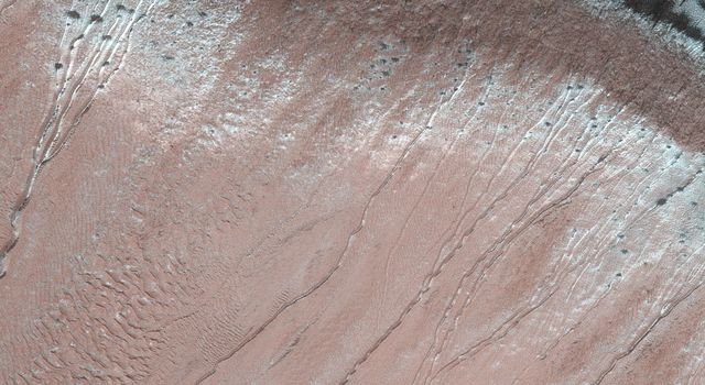 This image acquired on March 4, 2020 by NASAs Mars Reconnaissance Orbiter, shows gullies are common on steep slopes of many impact craters on Mars.