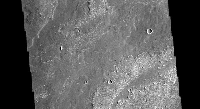 This image from NASAs Mars Odyssey shows part of the extensive lava flows that comprise Daedalia Planum.