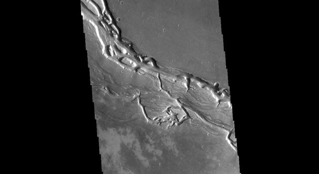 This image from NASAs Mars Odyssey shows many of the channel segments of Granicus Valles. Granicus Valles is a complex channel system located west of Elysium Mons.