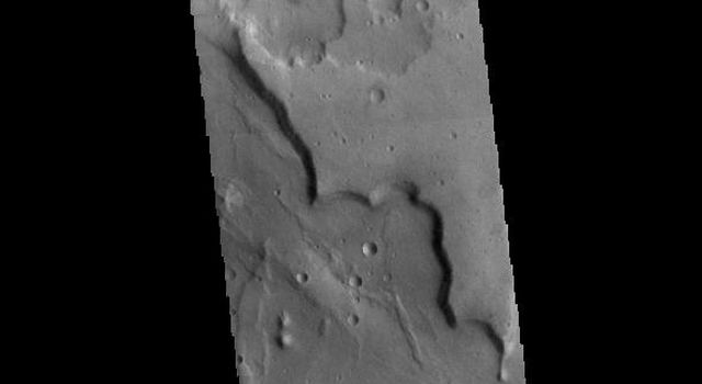 This image from NASAs Mars Odyssey shows a portion of eastern Terra Cimmeria.