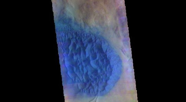 This image from NASAs Mars Odyssey shows dunes in several craters in Noachis Terra.