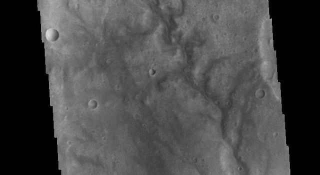 This image from NASAs Mars Odyssey shows several channels located in Terra Sabaea.